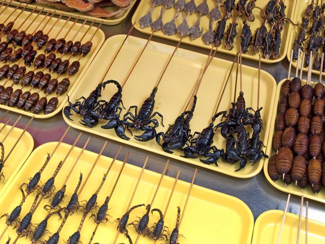 bugs-on-sticks-389608406.jpg