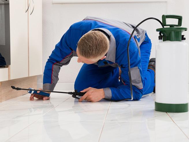 tech-sprays-under-appliance-636706955.jpg