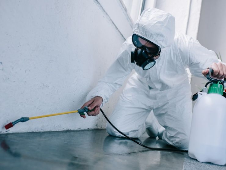 spraying-in-full-protective-suit-989311286.jpg